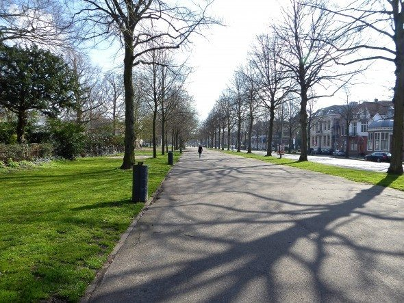 Dreef park Haarlem