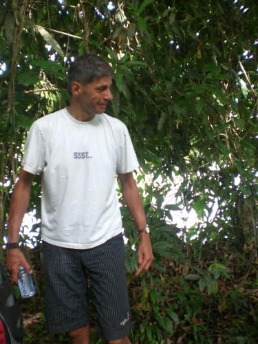 Papa regenwoud Suriname