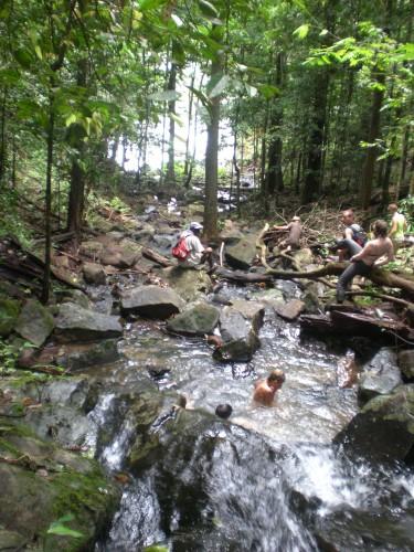 Regenwoud zwemmen suriname