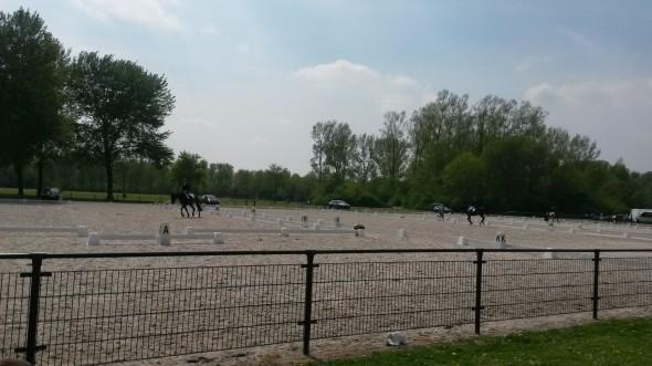 Paardrijden Haarlemmermeerse bos