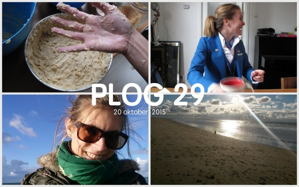 Plog 29 Hoofd collage