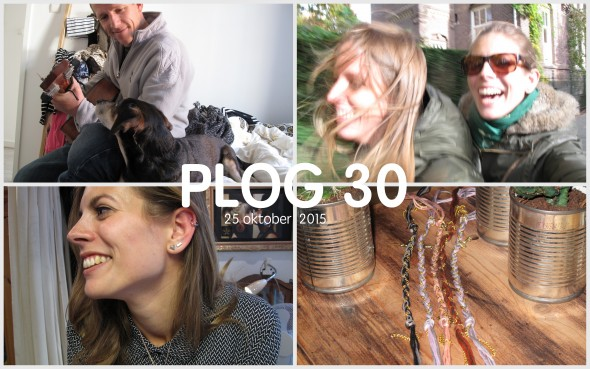 Plog 30 Collage