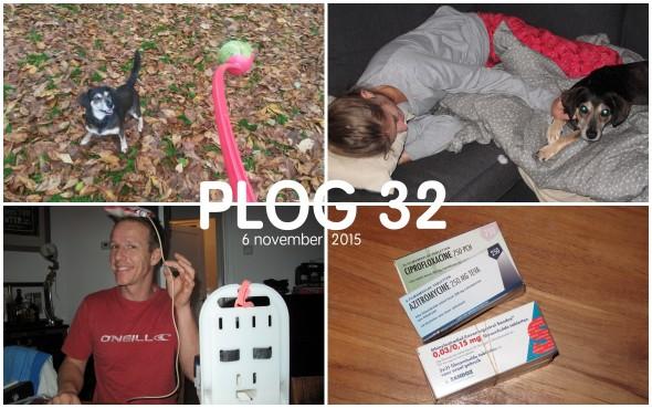Plog 32 Collage