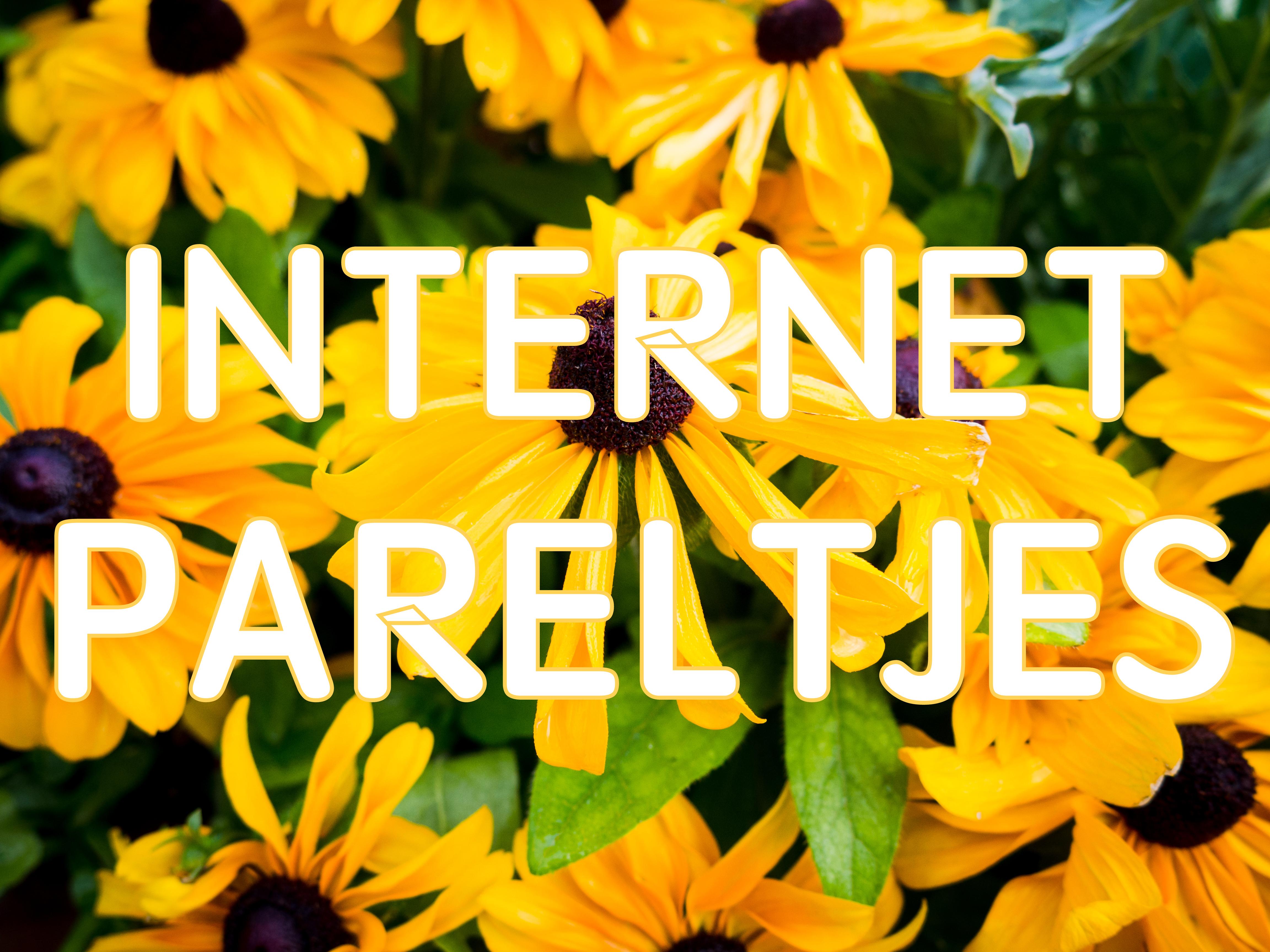 Internet pareltjes