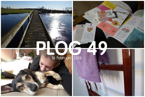 Collage Plog 49