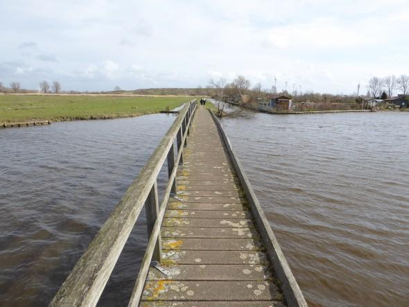Nederlandse polder