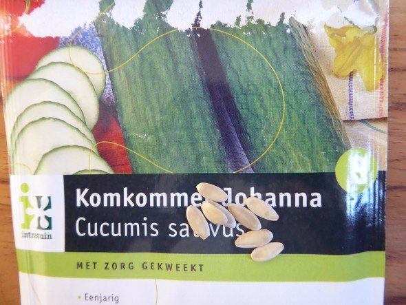 Komkommerzaadjes planten