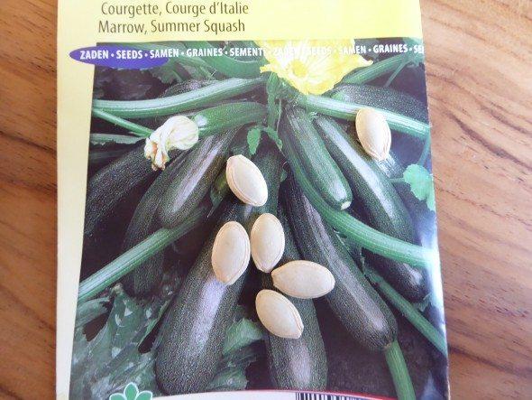 Courgettezaadjes planten