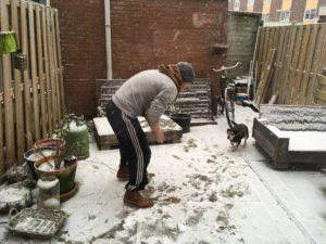 winter sneeuw tuin
