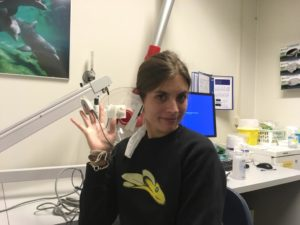 Transplantatie screening Utrecht
